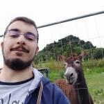 Fabio Leo Profile Picture